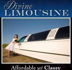 Utah-wedding-limo-Divine-Limousine
